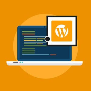 WordPress Plugin Development for Beginners in Urdu & Hindi